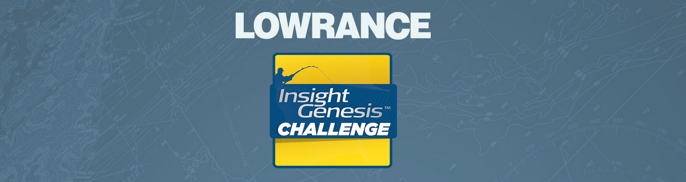 Insight Genesis Challenge Monthly Winners